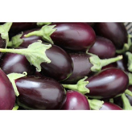 Picture of Brinjal Purple Round - 500 gm